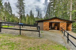 Photo 20: 12411 CARR Street in Mission: Stave Falls House for sale : MLS®# R2364246
