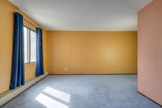 Photo 15: 211 10148 118 Street NW in Edmonton: Zone 12 Condo for sale : MLS®# E4157354