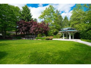 "Photo 2: 215 11605 227 Street in Maple Ridge: East Central Condo for sale in ""Hillcrest"" : MLS®# R2372554"