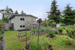 Photo 22: 1610 Dufour Rd in SOOKE: Sk Whiffin Spit Single Family Detached for sale (Sooke)  : MLS®# 816983