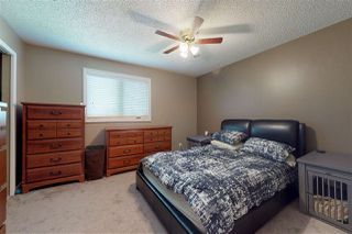 Photo 22: 3615 42A Avenue in Edmonton: Zone 29 House for sale : MLS®# E4161715