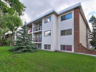 Photo 27: 104 10939 109 Street NW in Edmonton: Zone 08 Condo for sale : MLS®# E4163782