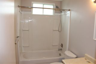 Photo 15: 217 Greenwood Drive: Spruce Grove House for sale : MLS®# E4165135