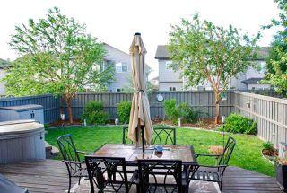 Photo 31: 20331 46 Avenue in Edmonton: Zone 58 House for sale : MLS®# E4179523