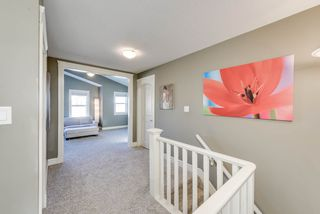 Photo 29: 20331 46 Avenue in Edmonton: Zone 58 House for sale : MLS®# E4179523