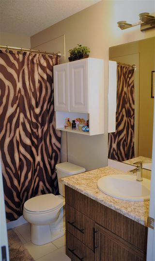 Photo 17: 311 Pioneer Road: Spruce Grove House Half Duplex for sale : MLS®# E4182784