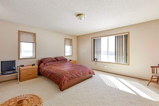 Photo 25: 465037 Rge Rd 24: Rural Wetaskiwin County House for sale : MLS®# E4196558