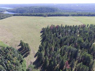 Photo 42: 465037 Rge Rd 24: Rural Wetaskiwin County House for sale : MLS®# E4196558