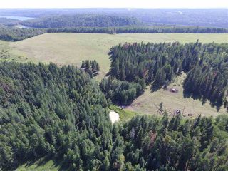 Photo 43: 465037 Rge Rd 24: Rural Wetaskiwin County House for sale : MLS®# E4196558