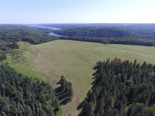 Photo 44: 465037 Rge Rd 24: Rural Wetaskiwin County House for sale : MLS®# E4196558