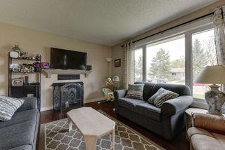 Photo 17: 59 GARDEN VALLEY Drive: Stony Plain House for sale : MLS®# E4197941