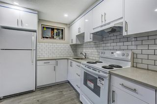 Photo 3: 635 WHITERIDGE Way NE in Calgary: Whitehorn Duplex for sale : MLS®# A1015180