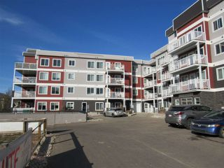 Photo 21: 111 1820 RUTHERFORD Road in Edmonton: Zone 55 Condo for sale : MLS®# E4219067