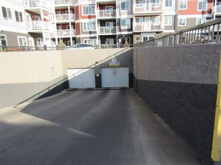 Photo 25: 111 1820 RUTHERFORD Road in Edmonton: Zone 55 Condo for sale : MLS®# E4219067