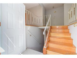 Photo 3: 964 Nicholson St in VICTORIA: SE Lake Hill Single Family Detached for sale (Saanich East)  : MLS®# 732243