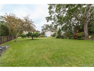 Photo 18: 964 Nicholson St in VICTORIA: SE Lake Hill House for sale (Saanich East)  : MLS®# 732243
