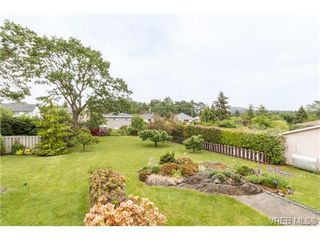 Photo 19: 964 Nicholson St in VICTORIA: SE Lake Hill Single Family Detached for sale (Saanich East)  : MLS®# 732243