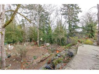 Photo 20: 991 Lavender Ave in VICTORIA: SW Marigold House for sale (Saanich West)  : MLS®# 748904