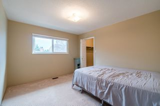 Photo 19: 5295 CHAMBERLAYNE Avenue in Delta: Neilsen Grove House for sale (Ladner)  : MLS®# R2232570