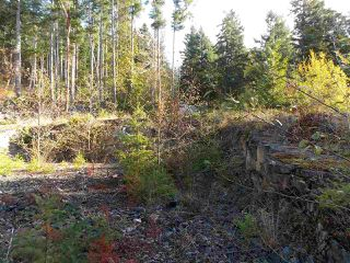 "Photo 6: LOT 105 JOHNSTON HEIGHTS Road in Pender Harbour: Pender Harbour Egmont Home for sale in ""DANIEL POINT"" (Sunshine Coast)  : MLS®# R2244687"
