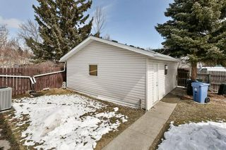 Photo 29: 1916 65 Street NE in Calgary: Pineridge House for sale : MLS®# C4177761