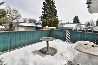 Photo 28: 1916 65 Street NE in Calgary: Pineridge House for sale : MLS®# C4177761