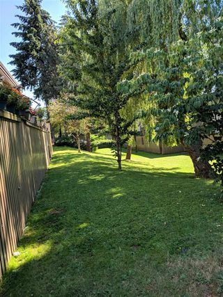"Photo 4: 35 13795 102 Avenue in Surrey: Whalley Townhouse for sale in ""MEADOWS"" (North Surrey)  : MLS®# R2280952"