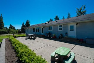 Photo 14: 27975 QUINTON Avenue in Abbotsford: Aberdeen House for sale : MLS®# R2287669