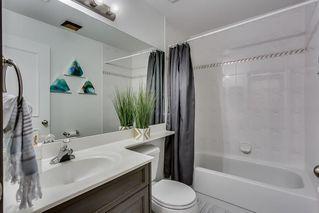 Photo 33: 164 CITADEL Manor NW in Calgary: Citadel Detached for sale : MLS®# C4221388