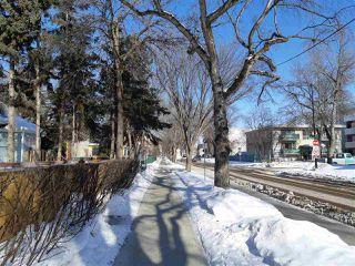 Photo 23: 7922 106 Street in Edmonton: Zone 15 House for sale : MLS®# E4145375