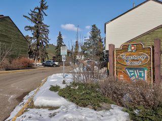 Photo 31: 459 ABBOTTSFIELD Road in Edmonton: Zone 23 Townhouse for sale : MLS®# E4191835