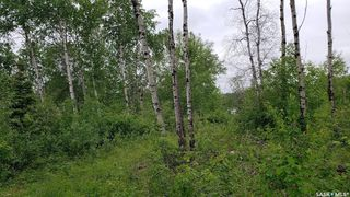 Photo 4: Lot 22 Sunset Cove in Big River: Lot/Land for sale (Big River Rm No. 555)  : MLS®# SK813872