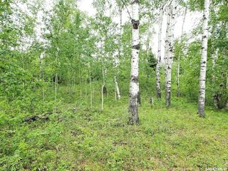 Photo 5: Lot 22 Sunset Cove in Big River: Lot/Land for sale (Big River Rm No. 555)  : MLS®# SK813872