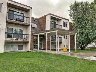 Main Photo: 102 11455 41 Avenue NW in Edmonton: Zone 16 Condo for sale : MLS®# E4211339
