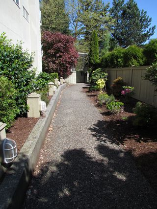 Photo 18: 8 33862 MARSHALL Road in ABBOTSFORD: Central Abbotsford Condo for rent (Abbotsford)