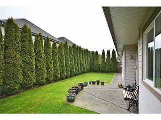 Photo 11: 3728 LAM Drive in Richmond: Terra Nova House for sale : MLS®# V1043376