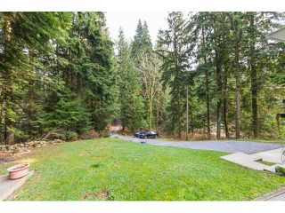 Photo 13: 12115 ROTHSAY Street in Maple Ridge: Northeast House for sale : MLS®# V1107301