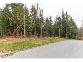 Photo 12: 12115 ROTHSAY Street in Maple Ridge: Northeast House for sale : MLS®# V1107301