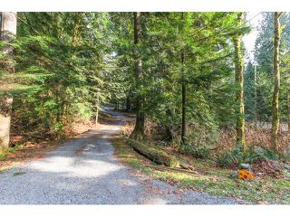 Photo 2: 12115 ROTHSAY Street in Maple Ridge: Northeast House for sale : MLS®# V1107301