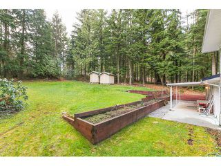 Photo 10: 12115 ROTHSAY Street in Maple Ridge: Northeast House for sale : MLS®# V1107301