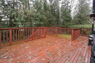 Photo 16: 877 ROSS Road in North Vancouver: Lynn Valley House for sale : MLS®# R2028383