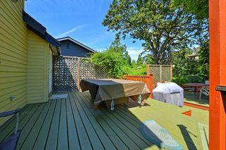 Photo 17: 3805 Quadra St in VICTORIA: SE Quadra House for sale (Saanich East)  : MLS®# 735444