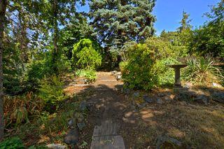 Photo 19: 3805 Quadra St in VICTORIA: SE Quadra House for sale (Saanich East)  : MLS®# 735444