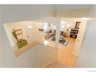 Photo 10: 74 Evanson Street in Winnipeg: Wolseley Residential for sale (5B)  : MLS®# 1622066