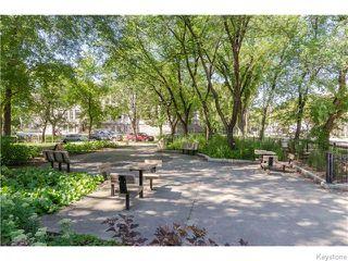 Photo 19: 74 Evanson Street in Winnipeg: Wolseley Residential for sale (5B)  : MLS®# 1622066