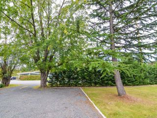 Photo 53: 280 Petersen Rd in CAMPBELL RIVER: CR Campbell River West House for sale (Campbell River)  : MLS®# 741465