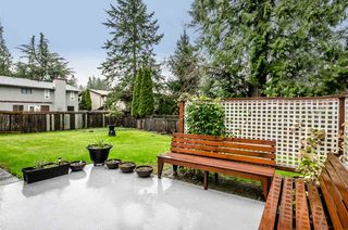 Photo 9: 10246 156A Street in Surrey: Guildford House for sale (North Surrey)  : MLS®# R2126997