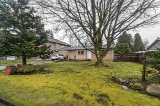 Photo 18: 21092 WICKLUND Avenue in Maple Ridge: Northwest Maple Ridge House for sale : MLS®# R2151756