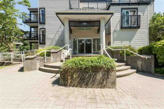 Photo 15: 205 2401 HAWTHORNE AVENUE in Port Coquitlam: Central Pt Coquitlam Condo for sale : MLS®# R2171855