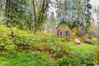 Photo 13: 11092 248 Street in Maple Ridge: Thornhill MR House for sale : MLS®# R2200717